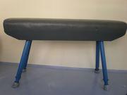 Оборудование гимнастическое: Козел,  конь,  брусья,  бревно,  перекладина,