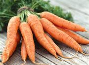 Морковь оптом сорта: Шантоне,  Каратель