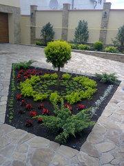 Ландшафтное озеленение