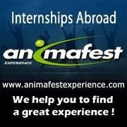Animafest Experience. Стажировки за рубежом