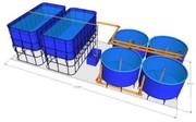 Осетровая УЗВ (домашняя осетровая ферма) 3000 кг в год