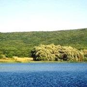 Прекрасный участок возле леса  в с. Гончарное. Севастополь