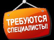 В ООО «Черномор Авто» требуются мастер цеха,  слесарь,  кассир